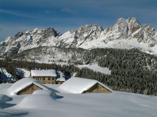 Altipiano di Casera Razzo (1.800 mt. s.l.m.)